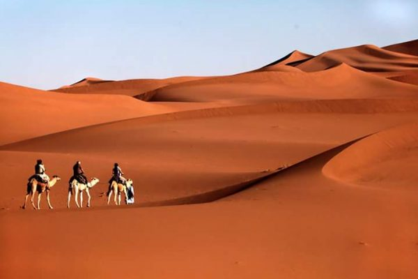 Camel-trek-4-days-4
