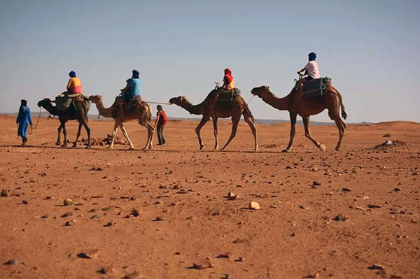 Sahara-Camel-Trek-on-3-days3