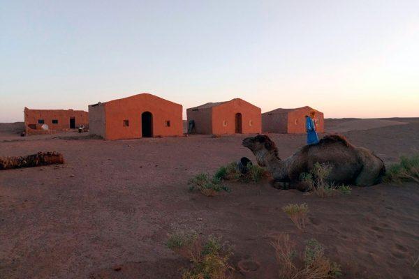 sahara-experiences4