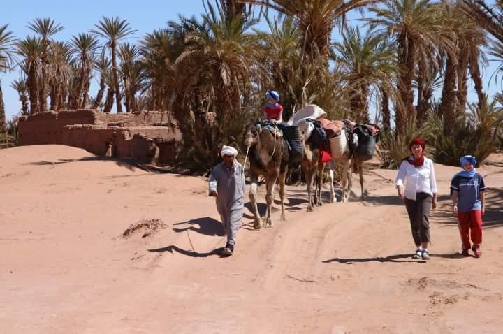sahara-tours